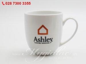 Ca Sứ In Logo Ashley