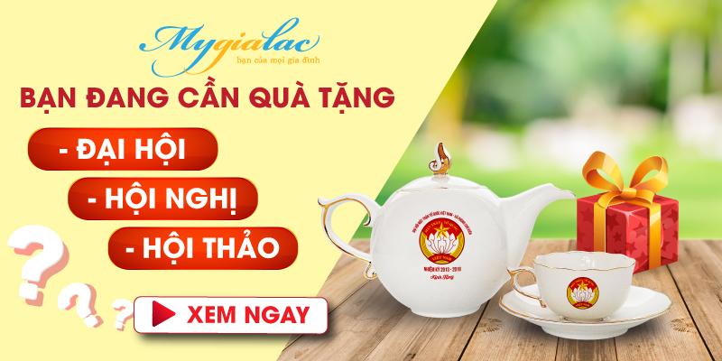 Banner Qua Tang Dai Hoi Hoi Nghi 1