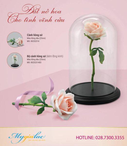 Quà tặng 8/3 hoa hồng sứ Minh Long